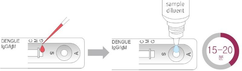 뎅기 항체 검사진행.jpg